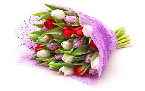 Tulipános háttérkép 4