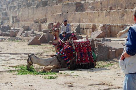 Egyiptom 2008 125