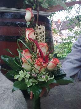 rózsás 2