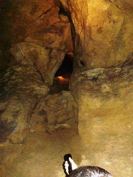 Ismerkedés a Pálvölgyi Barlang kincseivel. 61