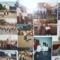 80 éves a gönyűi iskola 23