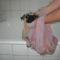 Jenny fürdik 2