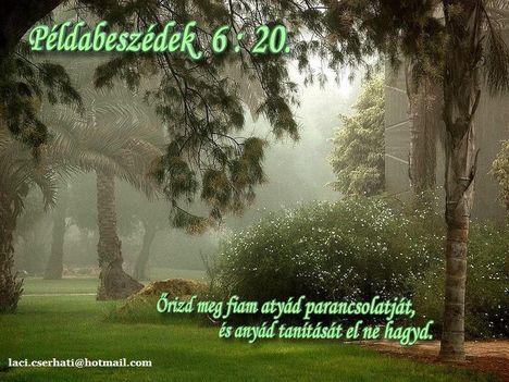 Példabeszédek 6-20