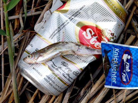 Természetkedvelő horgászok