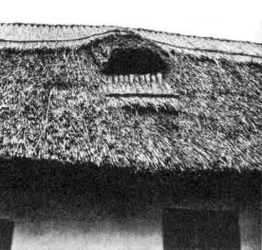 Nádtetős ház Nagybajcson