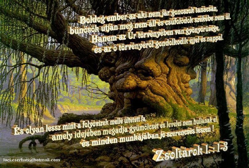 Zsolt 1:1-3