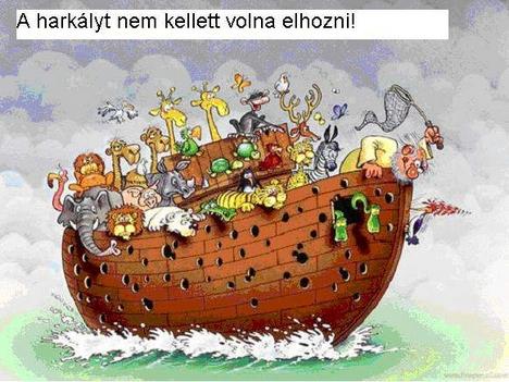 Noé_harkálya
