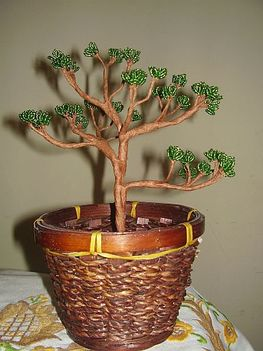 zöld bonsai 002