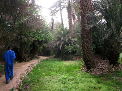Marokkó 2010 - 1 1178