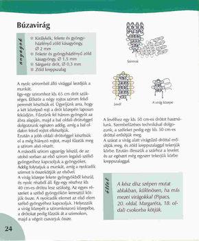 Virágos könyv(magyar) 22