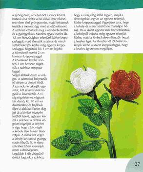 Virágos könyv(magyar) 25