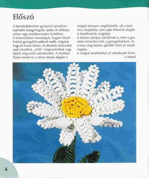 Virágos könyv(magyar) 2