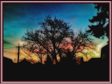 moha hajnal01
