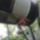 Zuhanyzo-001_716181_63883_t