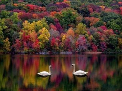 8...és ilyen tavakról is álmodom