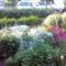 Böbi Virágai