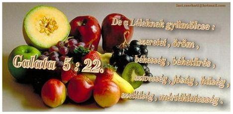 Galata  5-22.