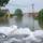 Az áradó Cuhai-Bakonyér Bőnynél 2010.05.18.