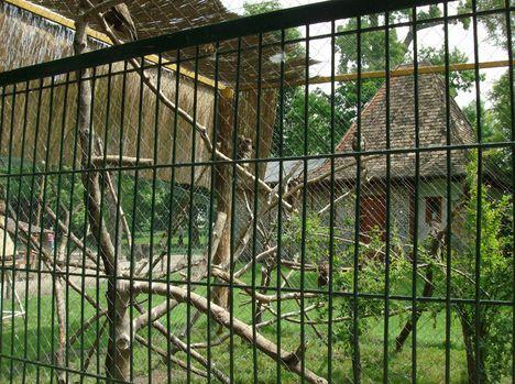 Margitsziget - Az állatkert lakói (17)
