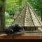 Margitsziget - Az állatkert lakói (2)
