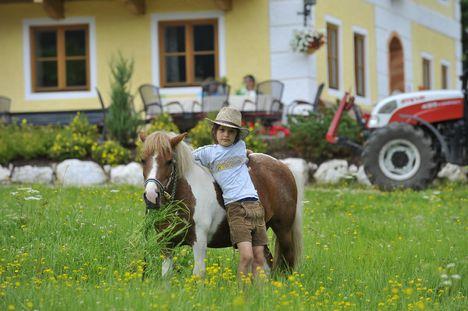 Falusi üdülés Ausztriában 20
