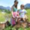 Falusi üdülés Ausztriában