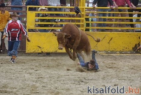 rodeo show 8