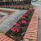 utcák, kertek...virágok 4