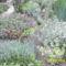 sziklakert,mely a kert nagyrészét behálozza