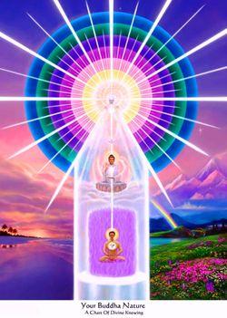 buddha-természet