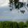 Szabadsag_hegy__panorama_6_756744_57720_t