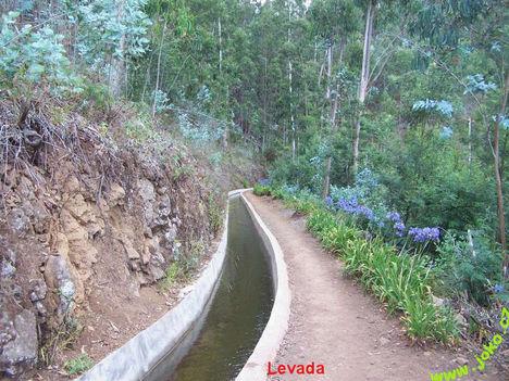 Madeira szigete 5