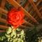 Egy rózsaszál..