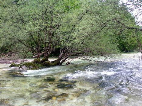 Száva - folyó