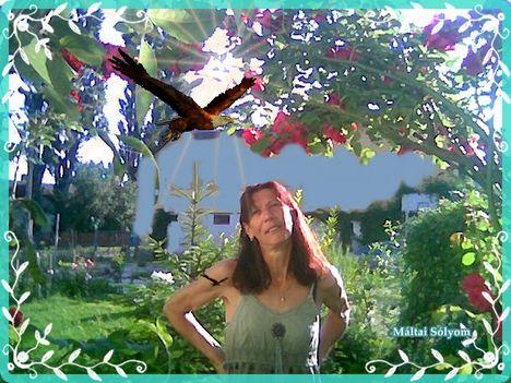 Én és a madaram