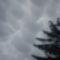 Fodrosodika felhő.