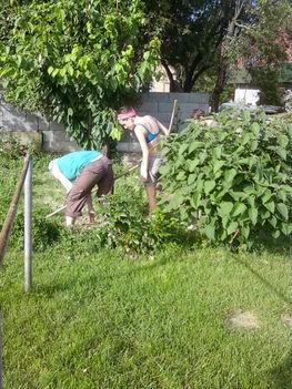 közösségi kertben próbálgatják a fiatalok a kertészkedést