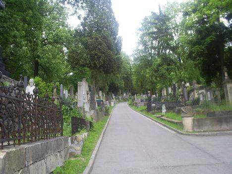 Erdély 2010