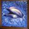 Kacago delfin
