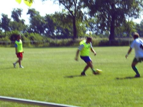 utcai foci