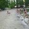 Vízbenfutó-verseny