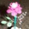 ismét egy rózsa