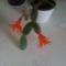 kaktusz1 1