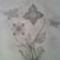 lepkés virágos