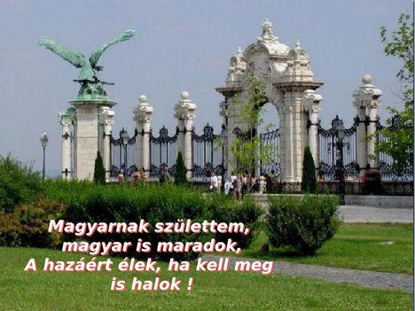 Magyarnak születtem