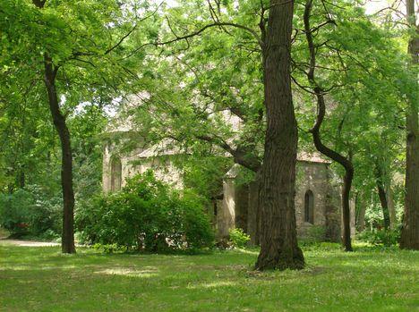 Margitsziget - A Kolostor (2)