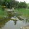 Margitsziget - A tó másik része (1)