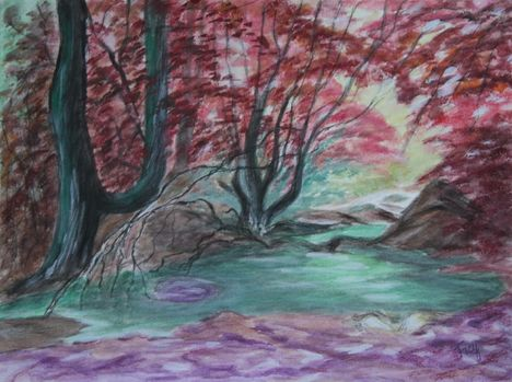 4       Az erdő mélyén