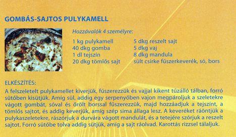 Főzzünk, receptekkel együtt! 8