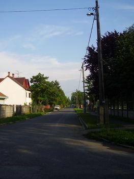 P5010093